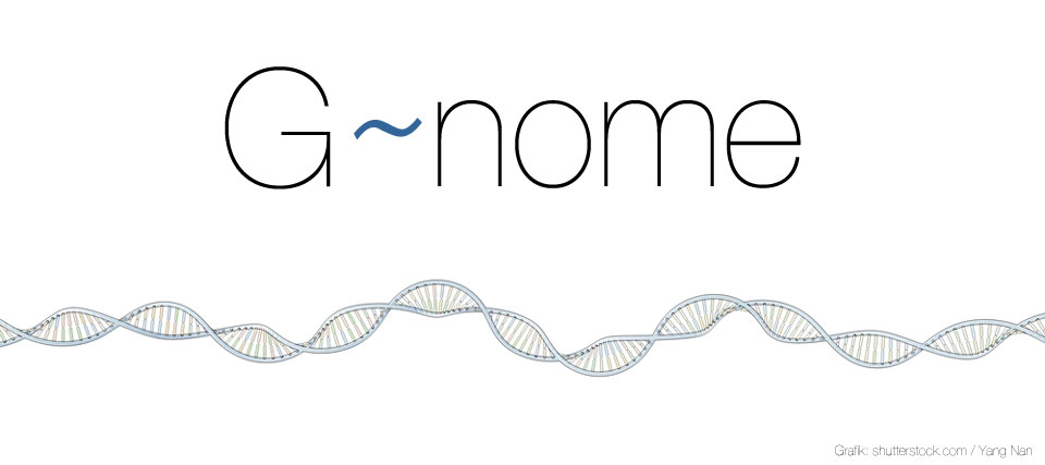 big-genome