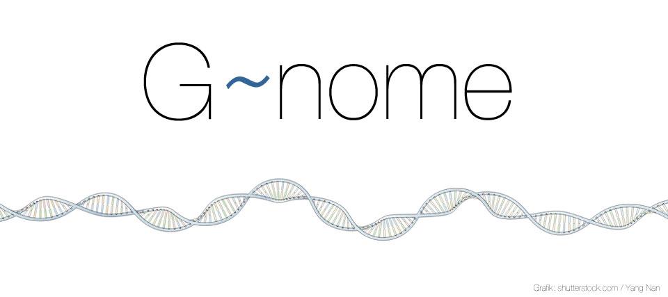 big-genome