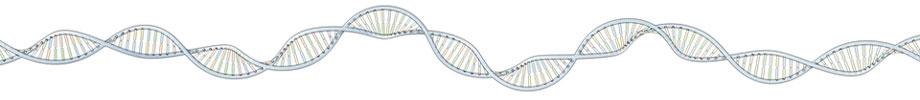 genomestring